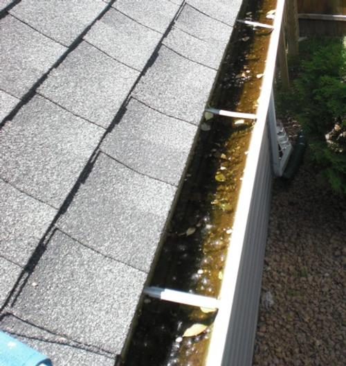 Edina Gutter Cleaning