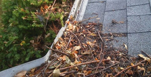 Home Maintenance Tip – Hiring a Gutter Cleaner in the Twin Cities