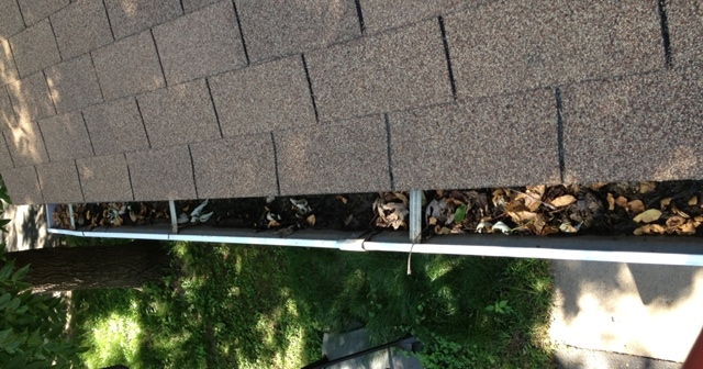 Bloomgington Gutter Cleaner