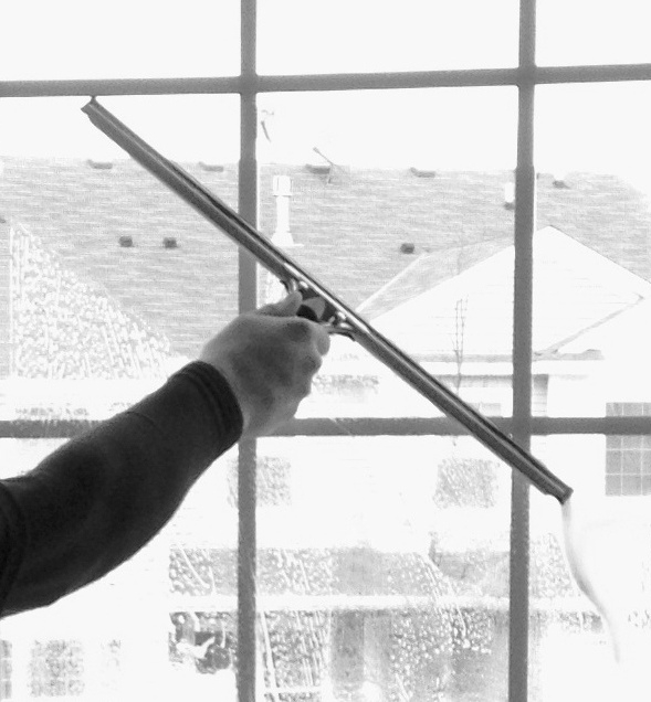 Edina Window Cleaner