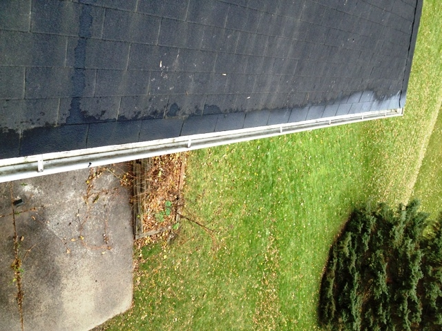 Gutter Cleaner in Twin Cities