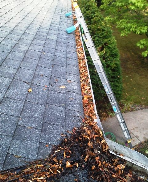Twin Cities Gutter Cleaning | Gutter Cleaning in Minnesota